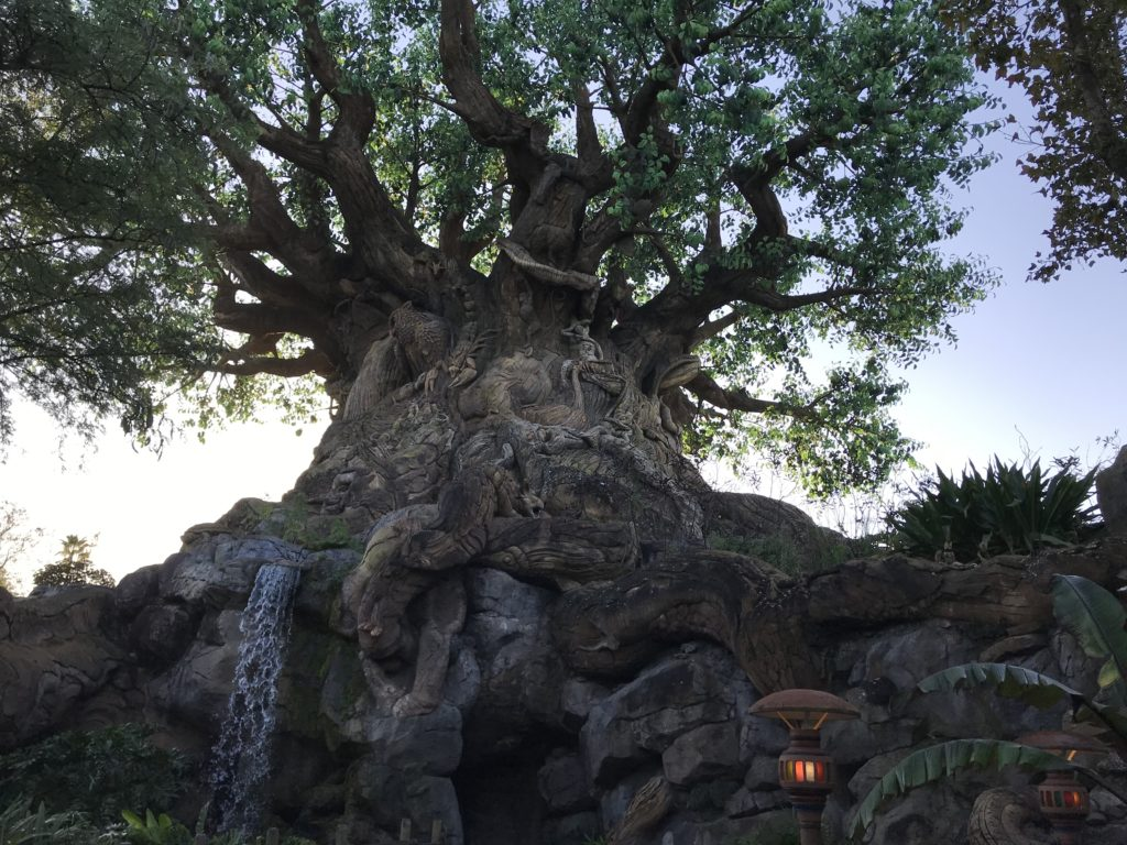 Elämänpuu - Animal Kingdom ikoni