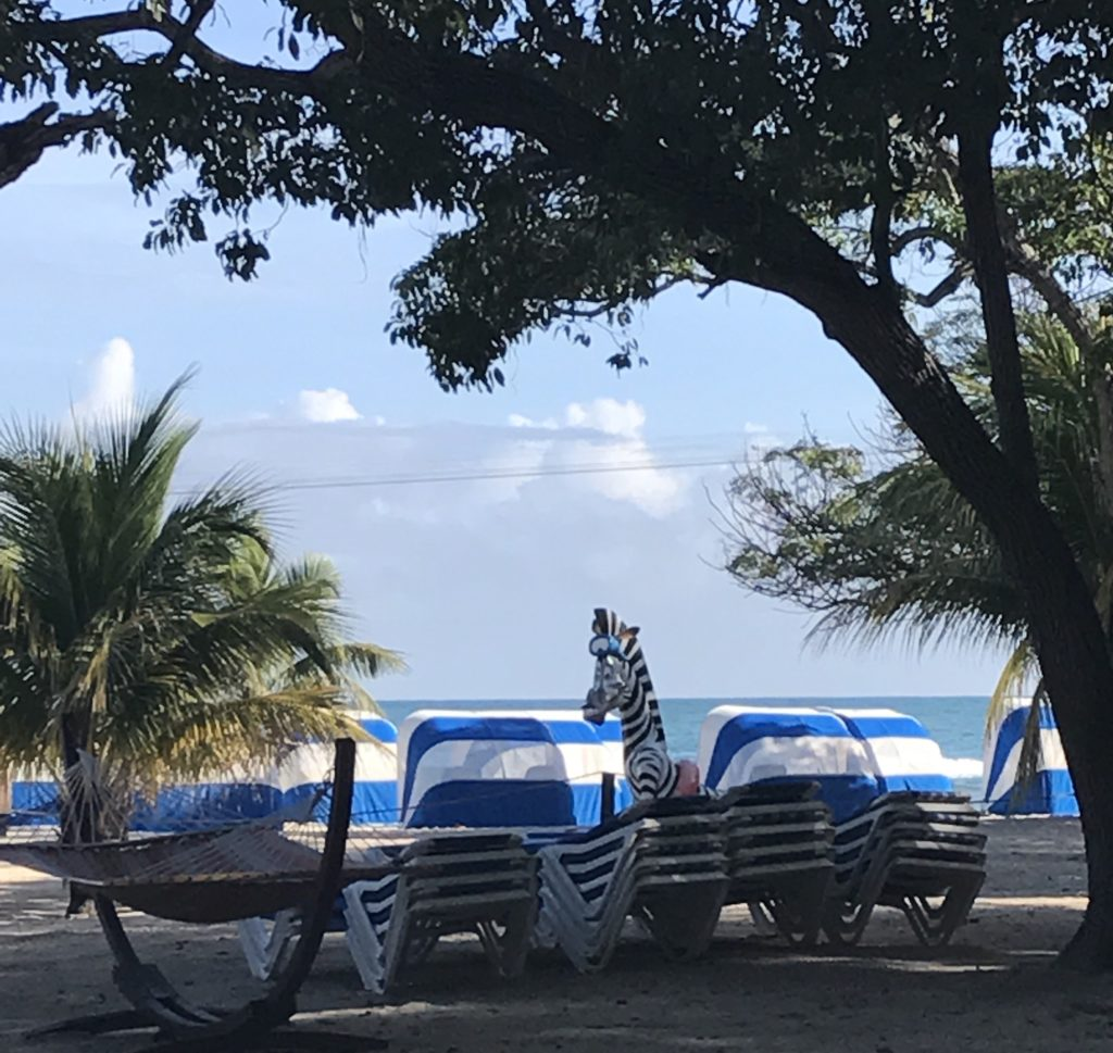 Labadee,Haiti.